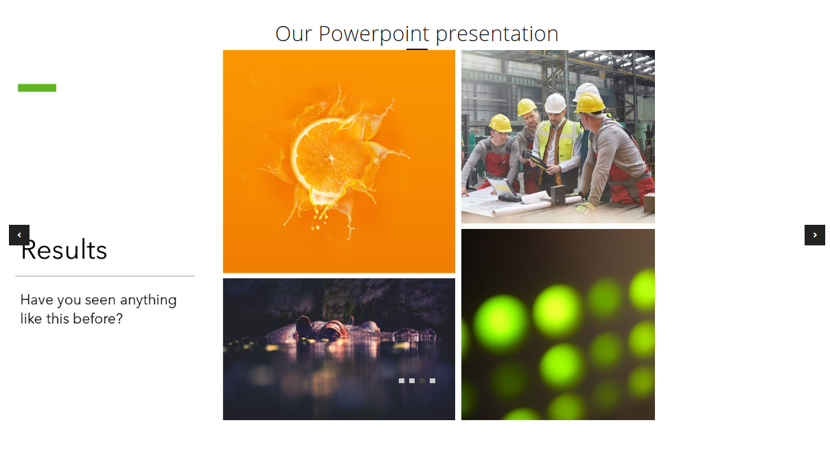 Powerpoint presentation embedded in the Presentation page.