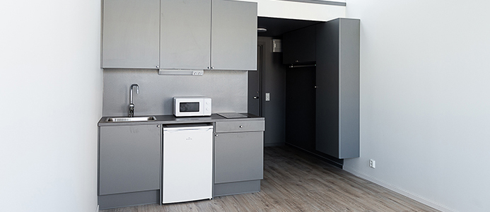 Student apartment with small grey kitchen
